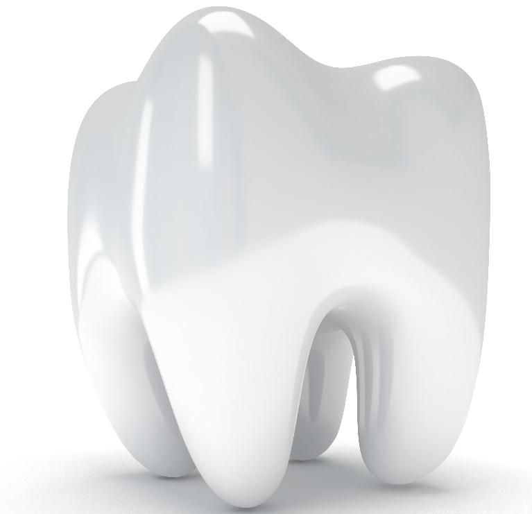 Close-Up of Tooth | Dentist Elgin IL